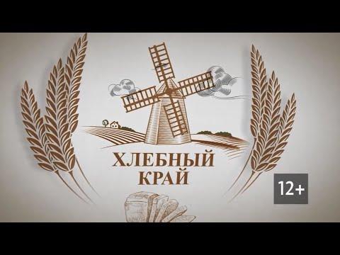 Хлебный край: прогнозы 13-й Зимней зерновой конференции в Белокурихе на сезон 2020 года