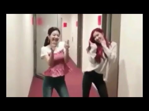 Blackpink's Jennie & Rosé dance 'Ddu-du Ddu-du' [CUTE VERSION]