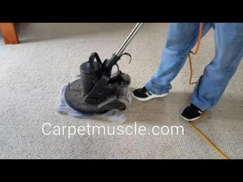 Nylon Berber carpet cleaning in Austin Texas