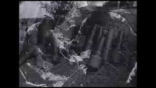 Посвящается 73 годовщине Победы в Великой Отечественной войне