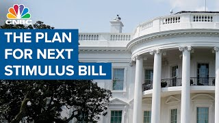 Senate Majority Leader ląys out plan for next Covid-19 stimulus bill