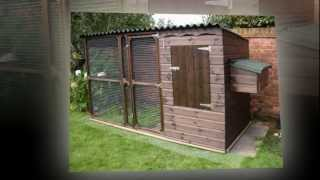 Building A Chicken Coop - Diy Plans You Can Try!