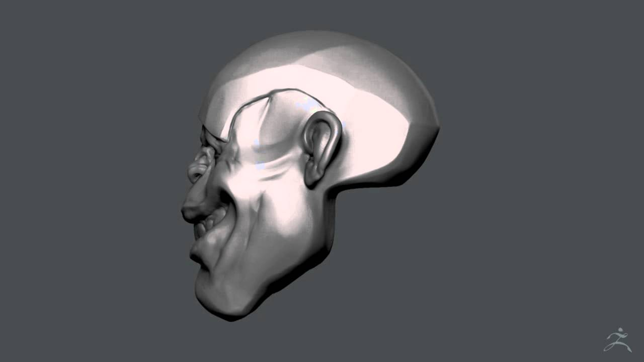 Zbrush Sculpting - Chimp Head_turntable