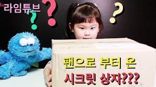팬으로 부터 온 시크릿 장난감 선물상자?? 먹방? Surprise Toys Box 라임튜브