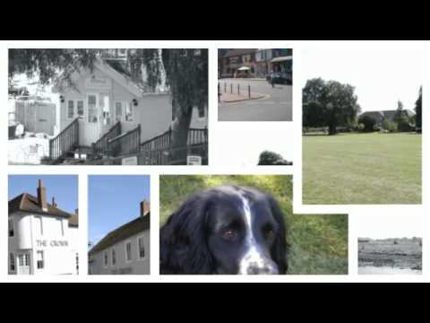 How To Join Woodbridge Dog Walking Club