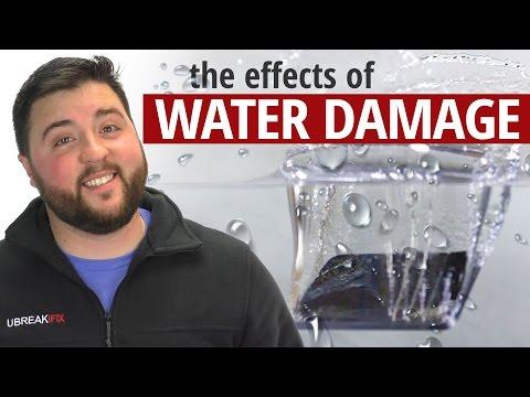 Water Damage Explained