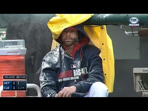 Kluber ENDURES shower of sunflower seeds!