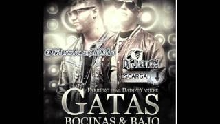 Gatas, Bocinas y Bajo - Farruko ft. Daddy Yankee (Dj Juandel Dembow Remix)