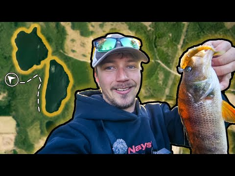 TACTICS FOR BEGINNERS - TRY NEW LAKE FROM SHORE (Do This And Catch Fish) | Team Galant