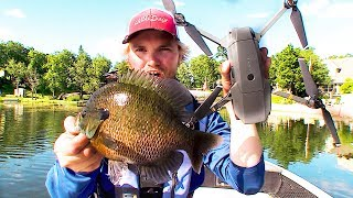 Catching big dumb Bluegills with a Drone! (Manitoba Western Region)