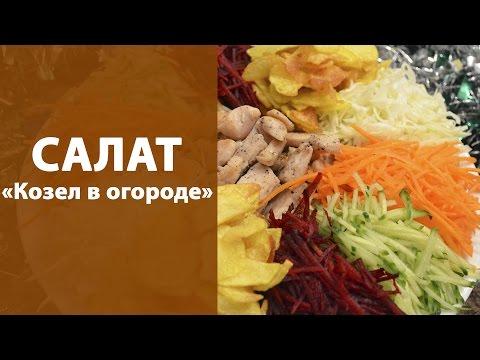 Сыроедные блюда и салаты