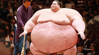 14 Things That You Didn't Know About Sumo Fighters