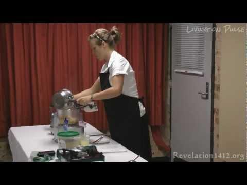 How to make vegan Hommus (Chickpea dip) & Babaganouj (Eggplant Dip)