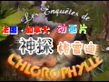 Capture de la vidéo Adventures Of Grady Greenspace Intro,les Enquêtes De Chlorophylle,神探格雷迪Op