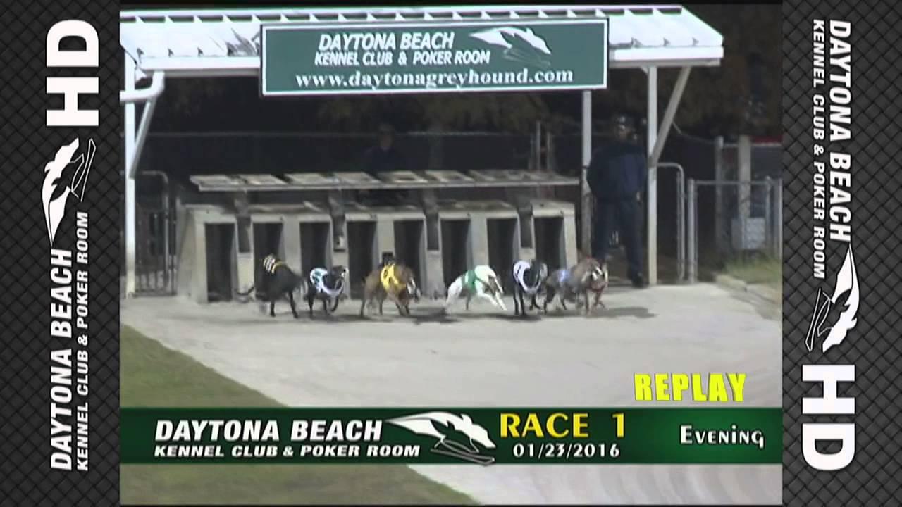 2016 Betamerica Daytona 550 Race 1 Results Chasmos Dutch Intro