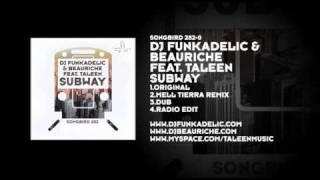 DJ Funkadelic & Beauriche featuring Taleen - Subway
