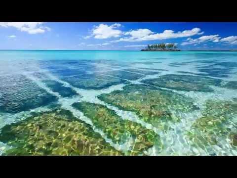Gaulding Cay Eleuthera The Bahamas