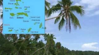 Maluku Medley (Elfas Singers)