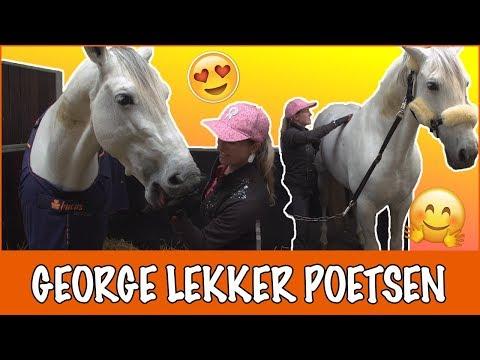 George zijn eerste week op stal | PaardenpraatTV