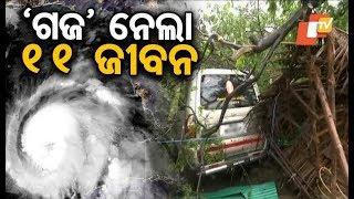 11 killed after cyclone Gaja makes landfall in Tamil Nadu