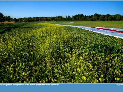 Grisy-Code Land Art à Grisy-les-Plâtres (95)