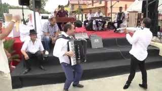 nou 2015 Marian Mexicanu  Show Ciocrlia ce nai mai vazut la nunta in Bocsa la Costa