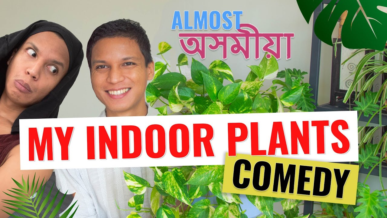 My Indoor Plants with Bonosree | Almost অসমীয়া Comedy | Chugli TV | Vishal Langthasa