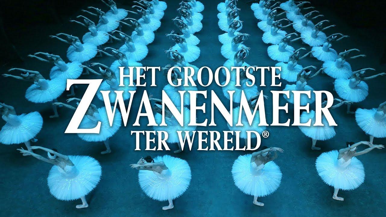 Het Grootste Zwanenmeer ter Wereld - Highlights