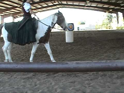 Archery - Day of the Horse Demo, Phx Zoo Dec 2010.mpg