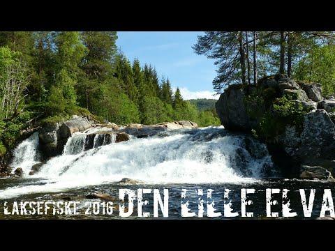 LAKSEFISKE 2016 - Den lille elva (4K)