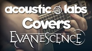 Bring Me To Life (Evanescence) - Acoustic Guitar Solo - Alvarez Guitars