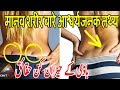 Most Amazing Facts About The Human Body You Didn't Know |Hindi-Urdu|Wisdom Unfolded
