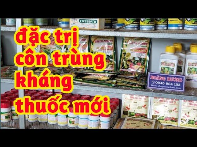 Diệt Sạch Trứng Đặc Trị Côn Trùng Kháng Thuốc Mới 0945924123
