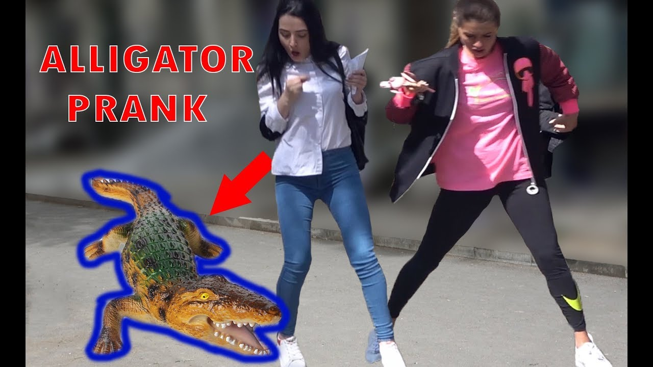 Remote Controlled ALLIGATOR PRANK 2019 - AWESOME REACTIONS - Best of Just For Laughs