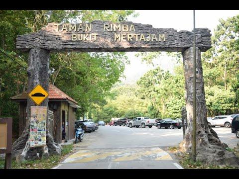 Cherok Tokun Nature Park, Penang - Malaysia State