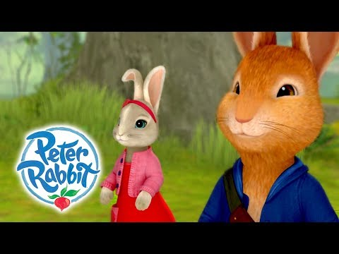 Peter Rabbit - Run Rabbit Run | Sing Along! | Cartoons for kids