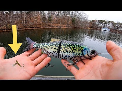 Fishing TINY Baits VS Big Baits On Nuclear Power Plant Lake