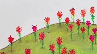 The Legend of the Indian Paintbrush (Widescreen)