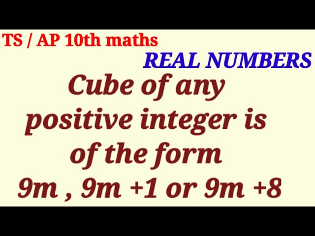 Real numbers 10th maths exercise 1.1 question number 4