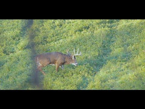 November 4-6th Hunting Blog, Buffalo County, Wisconsin