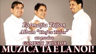 COLAJ ALBUM CHEF CU TRITON