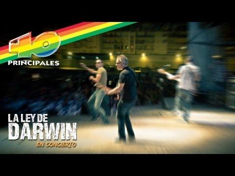 Los 40 Principales Radio- Playa 40 Gandía 2012 - La Ley de Darwin