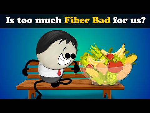 Is Too Much Fiber Bad For Us? | #aumsum #kids #science #education #children