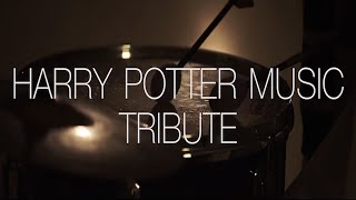 Harry Potter Music Indian Tribute  Tushar Lall  The Indian Jam Project