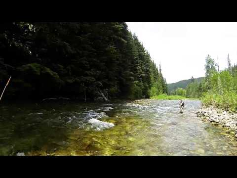 Fly Fishing The North Fork CDA June 2014