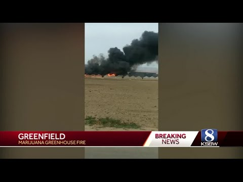 Cause of Greenfield marijuana farm fire investigated - YouTube