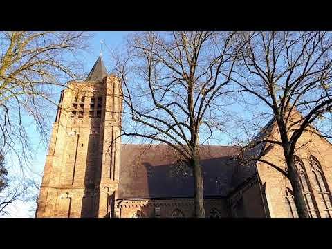 Son  en  Breugel  (Breugel)  (NL)  (N.B.)  St. Genoveva  -  Volgelui