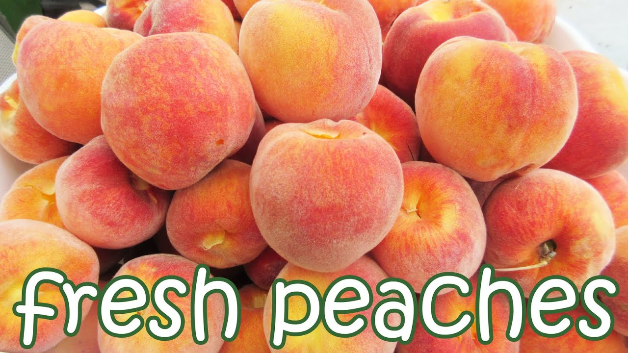 fruits in season peaches fruit