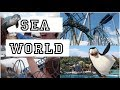 Sea World Australia   Gold Coast - Nicola's Travel Vlog #13