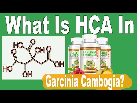 What Is Hydroxycitric Acid (HCA) In Garcinia Cambogia Extract Fr Weight Loss?